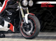 Axle Protector / Sliders front for Triumph Speed Triple 05-10