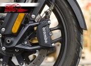 Brake calipers guard for Triumph Tiger 1200 & Tiger Explorer 2017 up